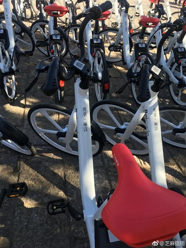 小白单车与芝麻信用合作:700分以上免押金骑车的照片 - 2