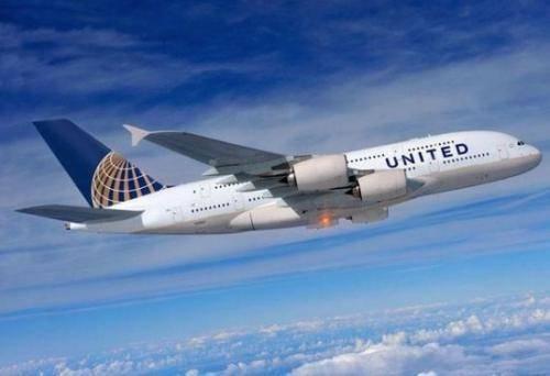美联航要求乘客将宠物狗打包放行李架 致狗狗惨死