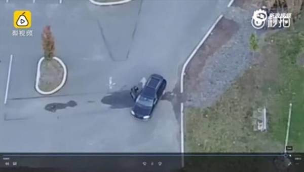 美国男子出动无人机捉奸:拍下妻子出轨全过程的照片 - 10