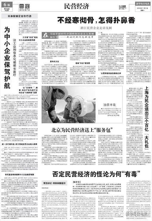 """新华社:否定民营经济的怪论有""""毒"""""""