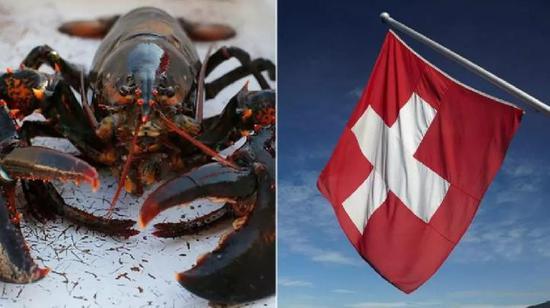 活久见!在这些国家煮龙虾炖鱼操作不当可能会违法