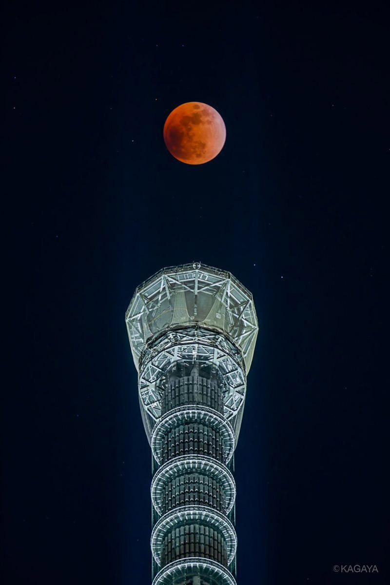 『图集』百年一遇超级蓝血月昨夜降临 国外摄影师月全食摄影作品欣赏