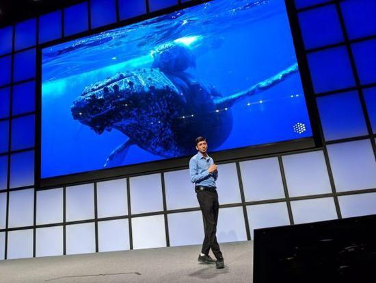 谷歌办AI社会公益大赛:奖金高达2500万美元