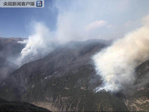 四川雅江县森林火灾现场大风 致过火面积达66公顷