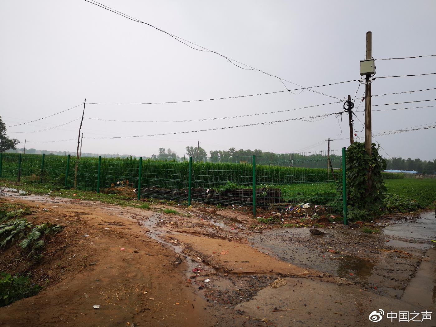 涉案土地被政府背景的文森公司用围栏圈了起来