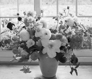 鲜花保存和插花的小技巧