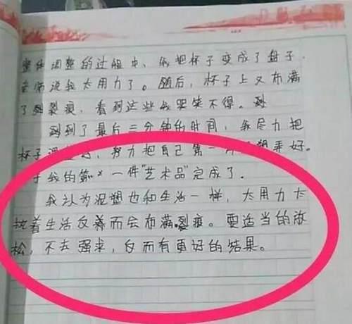 小学生作文炸出韩寒工作室 10万网友喊佩服