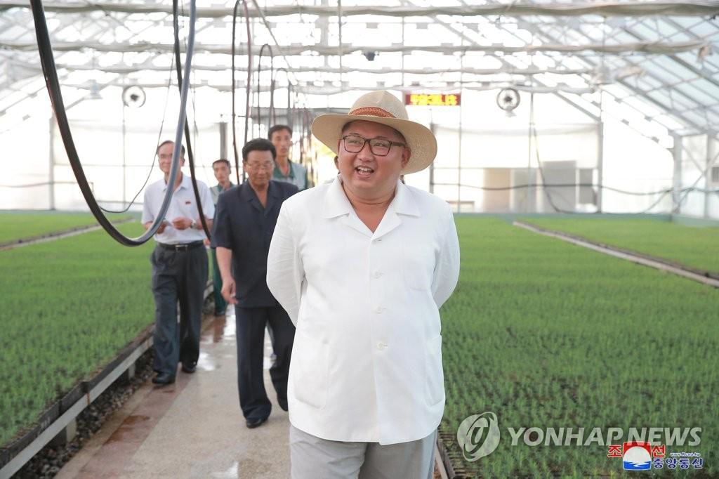 韩国企业家访朝首站被安排看苗圃 韩媒猜测用意