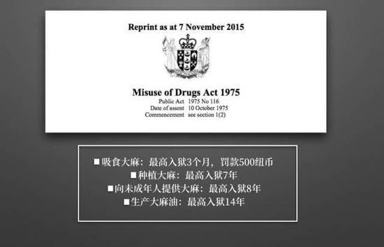 中国留学生从新西兰回国戒毒:下飞机不到2天身亡