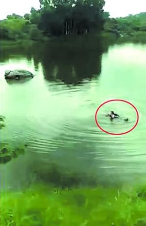女司机驾车跌落深水鱼塘 男子送充气轮胎救援