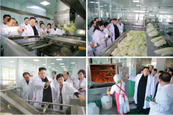 金正恩穿白大褂视察泡菜厂 强调加强民生建设