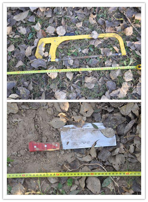 杀人碎尸案43小时被侦破 群众举报嫌犯形迹可疑