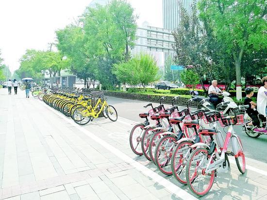 """太原施划停车位 共享单车有了""""家""""图片"""