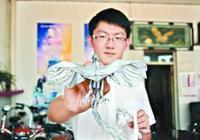 一学生靠折纸进哈工大 当事人称是门烧脑艺术特长