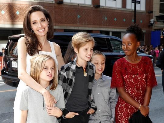 六个小孩抚养权未到手!安吉丽娜朱莉曝领养第七个