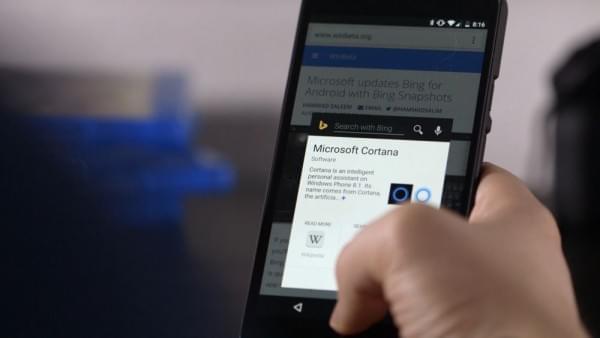 微软:Bing搜索为在线企业带去更多高质量用户的照片