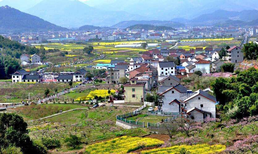 党报谈乡村振兴:农民的意愿 在村里比啥都重要