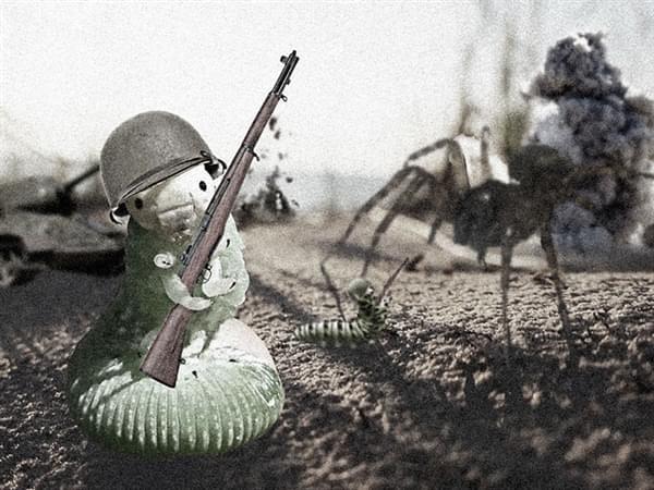 一只青虫引发的PS大战的照片 - 4