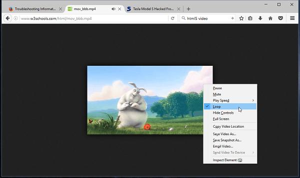 Mozilla Firefox 49.0.1 修正版发布的照片 - 3