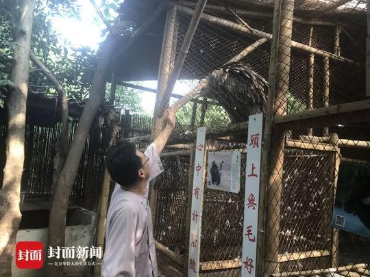 国学老师租10亩地收养百种动物办动物园 被疑作秀