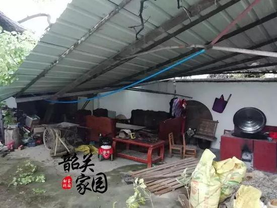 曲江暴雨致一棵百年老树倒下,砸向村民的家