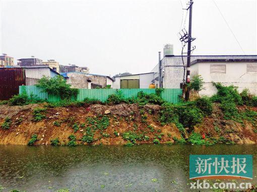 医疗垃圾回收公司被叫停后仍生产 垃圾露天堆成山