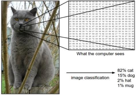 """应用丰富的""""卷积神经网络""""技术,怎样实现了图像识别?"""