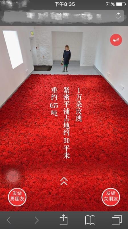 恋爱保险你会买吗 若在3年后结婚可收1万朵玫瑰