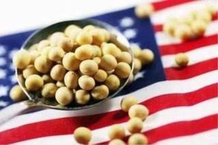 中储粮4月以来未购美国大豆 南美大豆占比已超美
