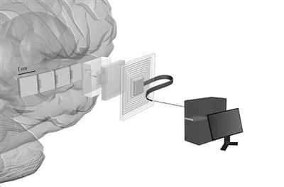美军研发脑芯片:百万个神经元将与计算机直接对话