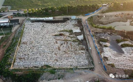 江苏泰兴数万吨废料污泥堆长江边追踪:5人被处分