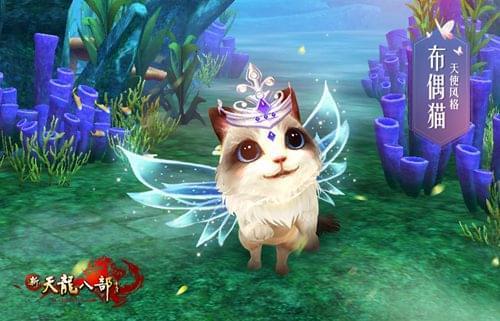 华丽的猫咪和华丽的你最配了