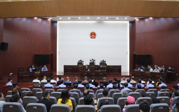 12人代购印度抗癌药加价销售获刑 被酌情从宽处罚