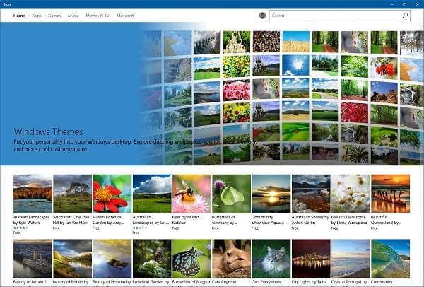 告别单调:正经的 Windows 10 主题终于来了的照片