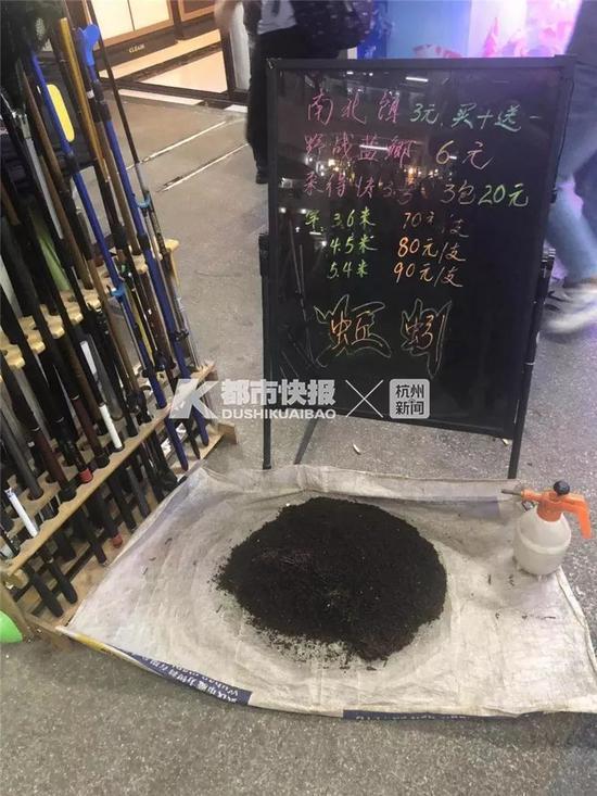 国庆长假杭州3万人出动 满城蜗牛和蚯蚓瑟瑟发抖