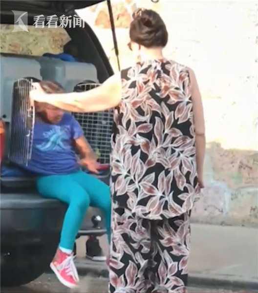 35℃高温车上没位置 美国奶奶把孙子装狗笼带出门