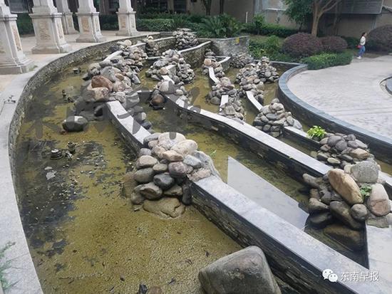 男童溺亡景观池家人吓傻 物业:打算在池旁设置护栏