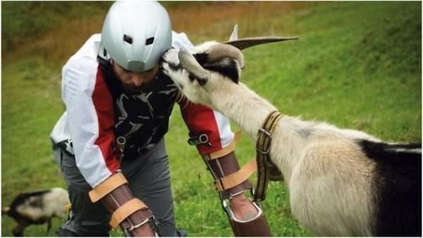 2016搞笑诺贝尔奖:男子因假装自己是山羊获奖的照片 - 1