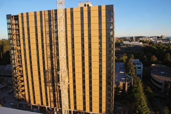 """""""树屋""""设计到80层了 木材也能建摩天楼?的照片 - 5"""