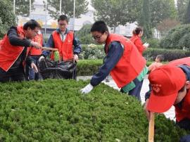 河津:60余团员青年志愿者参加义务劳动