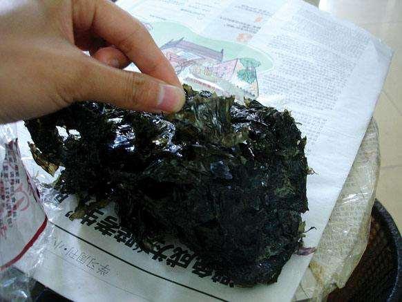 塑料紫菜谣言忽悠了一大波人致行业损失上亿的照片