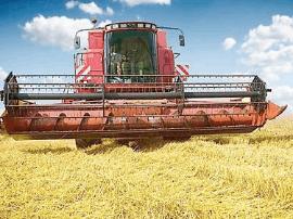 山东小麦大规模开机收割 3.6万台收割机上阵