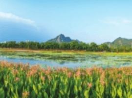 """漳州""""生态+""""模式的探索 让颜值气质全面提升"""