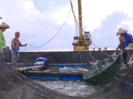 阳江去年水产品总量达124万吨