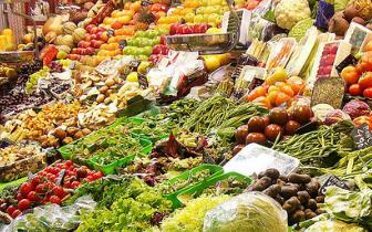 福建省今年首次农产品质量抽检总体合格率98.3%