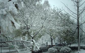 23日晚-24日白天 山西部分地区有小雪局部有中雪