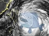 """台风""""鲇鱼""""影响我市 今天夜里到明天有强降雨"""