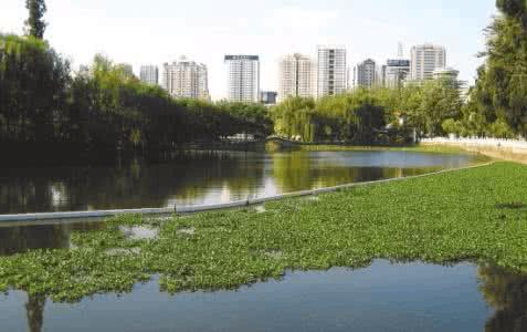 运城市水务局强力打造宜居水环境