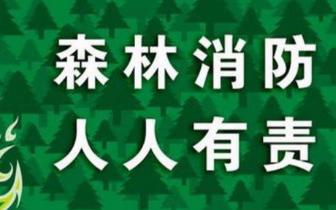 """阳城镇""""四到位""""落实清明期间森林防火工作"""