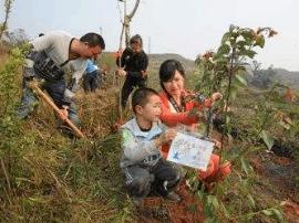 内蒙古发起苗木认养活动 引导青少年树立环保意识
